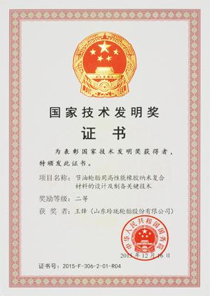 国家技术发明二等奖